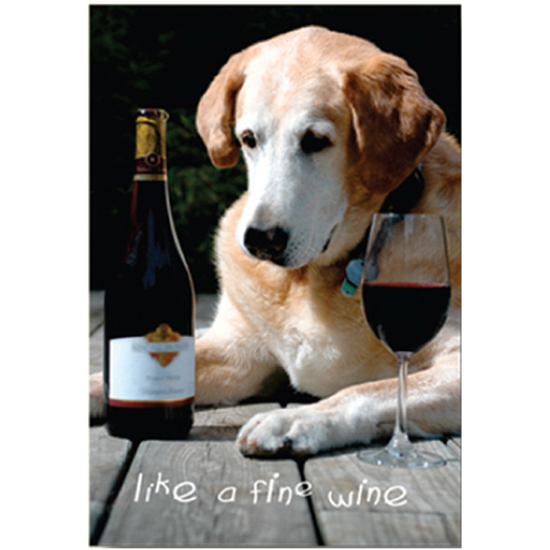 Great Birthday Card For Any Dog Lover The Front Of Reads Like A Fine Wine And